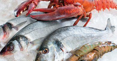 Saiba como escolher o peixe fresco, magro ou gordo, como limpar e como conservar até o consumo!